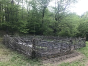 Rustic New England Garden