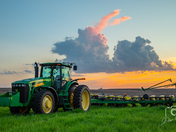 Deere and a Rabbit - Photo by Dave Austin