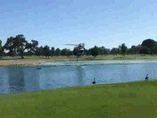 Hello, my husband saw this helicopter take water from the haggin oaks golf course moments ago to put out a fire