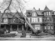 The Great Toronto Windstorm of 2018