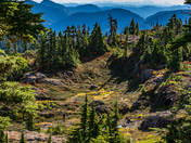 Hiking Minna Ridge Vancouver Island