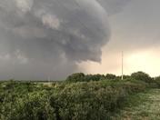 Storm  Delhi ok Denney Dodson