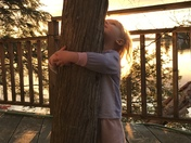Lily the little tree hugger.