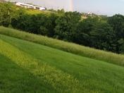 Rainbow in williamstown kentucky
