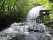 Hike 5-24-18 Jones Falls