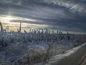 South of Inuvik, Northwest Territories