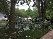 Storm damage in Gladstone