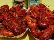 Crawfish in Maine? Thatsss crayfish