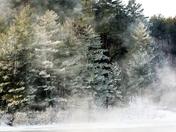 Canadian Winter Scene!