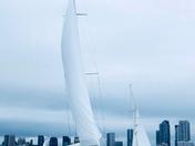 Toronto 💙 sailing!