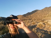 On the lookout for mountain lions bobcats and bears oh my!