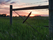 Rural Alberta Fence