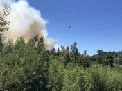 Scotts valley fire