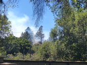 Scott's valley ca fire 5 acres cal fire