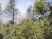 Scott's valley ca fire 5 acres cal fire