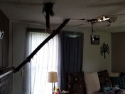 Home in Davie county @ 162 Rockhouse Rd that tree fell on during storm.