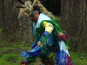 Grassy Dancer