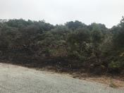 Manzanita Circle fire