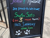 J.Crew Dartmouth is proud to host Surfin' Sato, and some very special puppies rescued from Puerto Rico