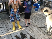 Fathers Day Lobsters