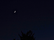 Tonight's Moon and Venus 16 June 2018