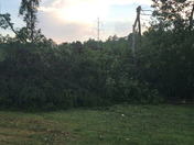 Possible tornado damage on strawberry dr in berea