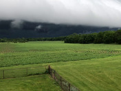 Boone near Ledges State Park as storm approaches...