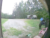 Bear set off video doorbell
