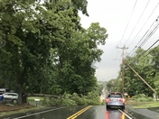 Power line & tree down on Wellington Rd Manchester 6/18