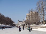 Skating on the Rideau Canal, Ottawa