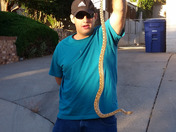 Caught an angry three foot bull snake with one hand behind my back