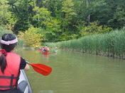 Rowing at Humber River