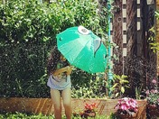 Summertime Sprinkler Fun