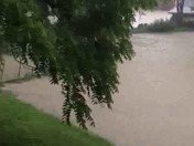 My backyard flooded!