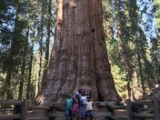 Sequoia/Kings Canyon National Park