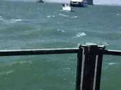 Dramatic rescue on San Francisco bay today