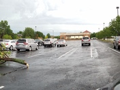 A tree in the parking lot of B&B Theaters snapped at its base