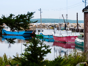 Fishing boats of all colours