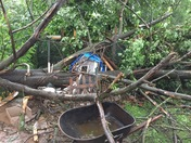 Large tree came down accross our yard during storm