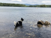 Staying cool with a view on Squam