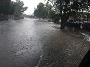 ABQ rain