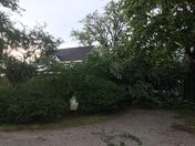 Storm damage in Pella from pop up storm