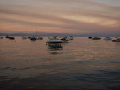 Effects of the Ferguson Fire at Tahoe
