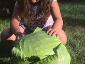 "Lillian with ""Cabbage Head!"