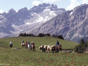 Trail riders in an alpine meadow