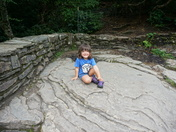 Pisgah National Forest
