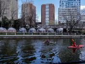 Urban Kayaking