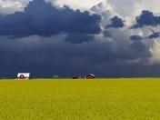 Rain Storm Coming!