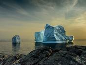 Newfound Icebergs