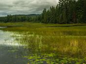 Lanark Ontario Watershed